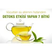 Detoks Etkisiyle Vücudunuzu Temizleyen Bitkiler