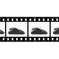 """""""Yazmak"""" Ve """"Yazarlık"""" Üzerine 11 Film"""