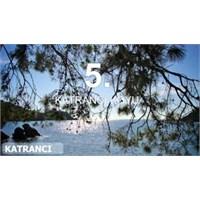 En Güzel Plajlar: Fethiye