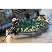 Çin İthal Yaş Meyve Pazarı