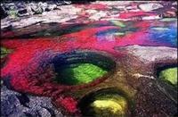 Dünyanın En Renkli Nehri