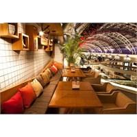 Projevve'den Big Plate Cafe Aydınlatma
