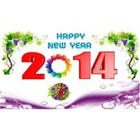 Dünya Yeni Yıla Böyle Girdi!