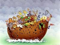 Nuhun Gemisinden Öğrendiklerim