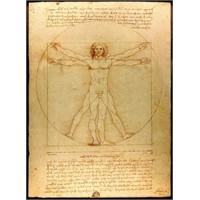 Vitruvius Adamı Nedir?