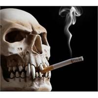 Sigarada Pasif İçici Olmak Daha Zararlı