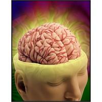 Hafızayı Güçlendirmek Çok Basit