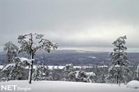 Kışta Laponya