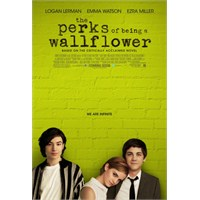 The Perks Of Being A Wallflower Eleştirisi