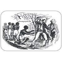 Kölelik Hakkında Enterasan Gerçekler