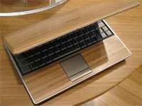 Bambu Laptop