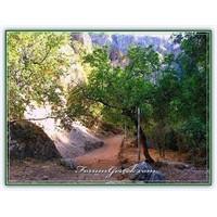 Astım Mağarası | Cennet - Cehennem – (Mersin)
