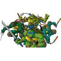 """Ninja Turtles"" 2014'e Ertelendi"