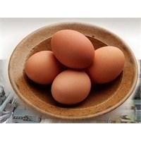 Yumurta Diyeti İle Zayıflayın