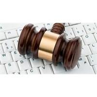 Dijital Hak Ve Hürriyetler (2)