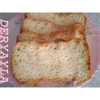 Dereotlu Hellim Peynirli Ekmek