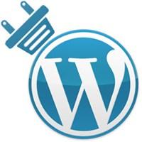 Neden Wordpress'i Tercih Ediyoruz?
