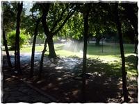 Göztepe Özgürlük Parkı Resimleri