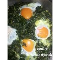 Yumurtalı Ispanak Kavurma Tarifim
