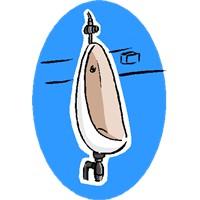 Bira İçenler Neden Sık Sık Tuvalete Giderler?