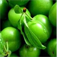 Mevsim Meyvelerinin Mucizevi Faydaları