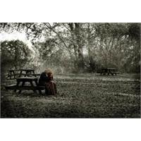 Yalnızlık Eşittir Bencillik