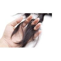 Dökülen Saçlar İçin Bitkisel Destek