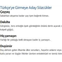 Türkçe'ye Girmeye Aday Sözcükler