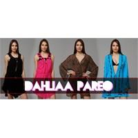 Dahliaa Pareo