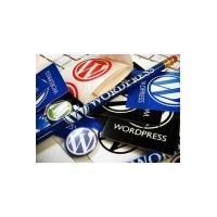 Ücretsiz Profesyonel Wordpress Temaları