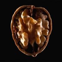 Beyne Benzeyen Ceviz Beyne İyi Geliyor