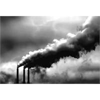 Çevre Kirliliği Kanser Nedeni