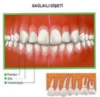 Ağız Sağlığı Sadece Sağlam Diş Demek Olmuyor