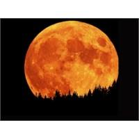 Bu Gece Ay'a Dikkatli Bakın