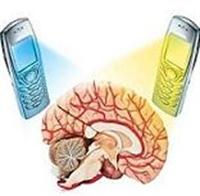 Cep Telefonu Kanser İlişkisi
