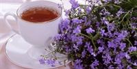 Ender Saraç Bitki Çayları Ve Faydaları