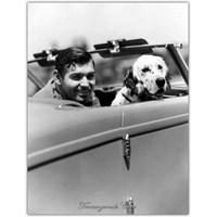 Amerikan Rüyasının Ayhan Işık'ı | Clark Gable