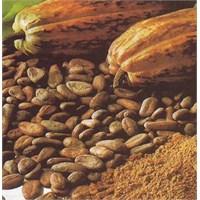 Kakao Yağı İle Gelen Güzellik