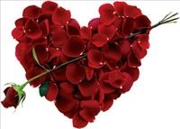 Seni Seviyorum Demeden De Sevginizi Gösterebilirsi