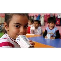 Okul Sütü Projesi Zehirlenmelerle Başladı!