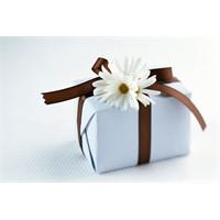 Oğlak çocuğuna nasıl hediye seçmeli?