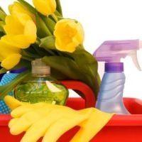 Ev Temizliği İçin Pratik Bilgiler