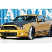 Geiger Ford Mustang Shelby Gt640 Golden Snake