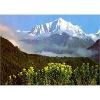 Dünyanın Çatısı: Tibet