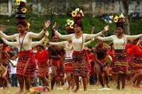 Baguio Şehrinde Çiçek Festivali