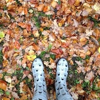 Dingen waar je blij van wordt in de herfst