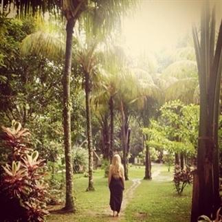 Een onvergetelijke reis: Suriname