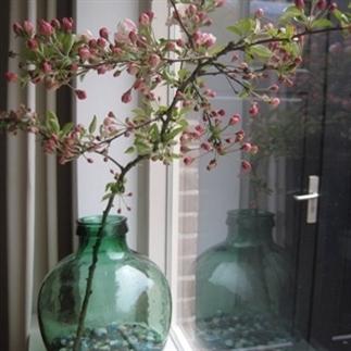 Grote vazen in je vensterbank