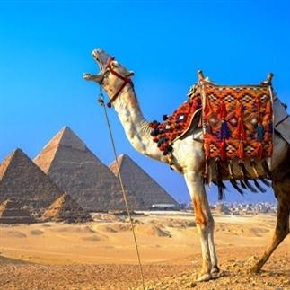 Ontdek de Piramides in Egypte met Google