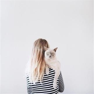 Pinteresting: katten en hun baasjes
